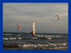wind surf Adicora